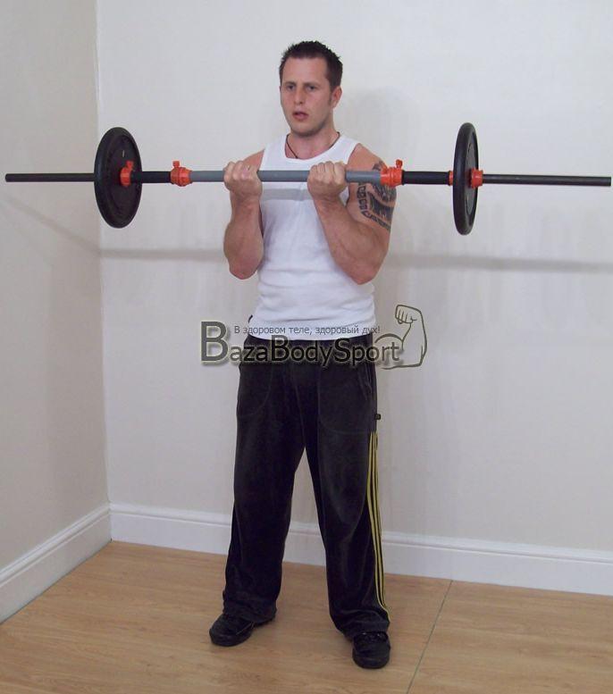 комплекс тренировок для мышц рук отзывы