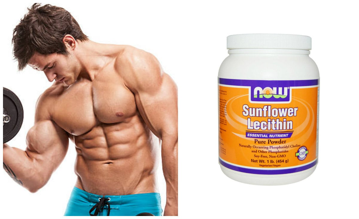Добавка Sunflower Lecithin Powder