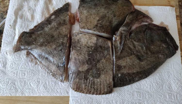 Kalkan black sea fish -1